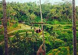 Ubud Customized Tour