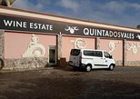 Algarve Coast Tour & Winery visit ( Confortable Van Tour )