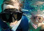 Reef Snorkel & Sail Adventure - Morning