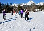 Cross Country Skiing around Strbske Pleso: High Tatras