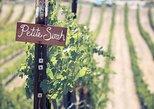 Grapeline's Wine & Picnic Tour - Sonoma