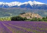 Excursion d'une journee dans les gorges du verdon,castellane et moustiers Ste marie départ de Nice