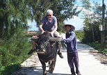 Experience Local Daily Life of Hoi An countryside from Hotels in Hoi An,Da Nang