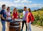 Getaria and Zarautz Txakoli Wine Tour from San Sebastian with Tastings