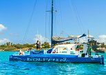 Catamaran Dolphin Snorkeling