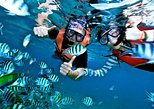 Hurghada: Snorkeling Day Tour Super Giftun Island Snorkeling with Lunch