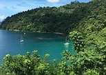 Tobago Two day Rainforest and Island Tour