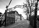 Guided Auschwitz-Birkenau tour from Krakow