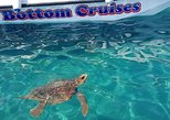 Cruise to turtle's island and caves with a glass bottom boat