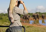 5-Day Garden Route with Addo National Park Small Group Tour from Cape Town