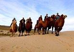 10 Days Classic Mongolian Tour