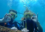 Bali Beginner Scuba Diving