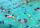 Snorkelling Lagoon Cruise
