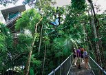 Daintree Discovery Centre Single Pass