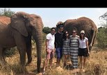 Elephant Walk Guided Tour from Johannesburg R2150 Private