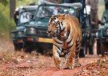Car & Driver For Jaipur-Ranthambore-Udaipur-Mount abu-Jodhpur 7 Nights 8 Days