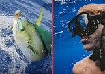 Private Charter: Snorkeling and Trolling Fishing (2 activities merged on 1 tour)