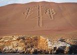From Lima: Ballestas, Nazca Lines & Huacachina Oasis