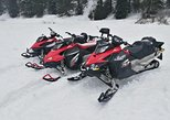 Transylvania, Dracula's Castle & Fun with the Snowmobile or ATV tour in one day