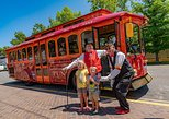 go for a salt lake city trolley tour
