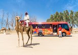 Africa & Mid East - Bahrain: Ultimate Bahrain - The Full Day Tour (9 hours)