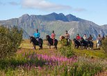 Riding tour Lofoten by horse, from Gravdal