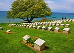 2 Days Small Group Gallipoli and Troy Tour from Istanbul