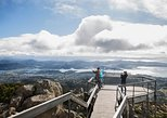 Full Day Tour Hobart: Mt Wellington Bonorong Wildlife Richmond Wine/Cheese
