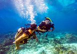Roatan Scuba Shore Diving