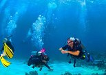 Roatan Reactive-Refresher Dive Course