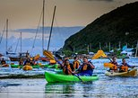 Bioluminescent Bay Night Kayaking & Rainforest Tour Combo