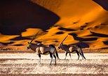 10 Day Swakopmund & Namibia Safari Tour (B&B & Camping)