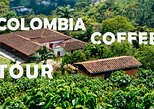 Colombia Coffee Tour - Half day tour | From the seed to the cup!