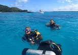 Combo diving and snorkeling full day tour