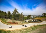 From Busan : Private Tongyeong excursion with Skyline Luge