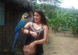 Full Day Jungle Tour