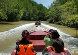 Can Gio Mangrove Forest and Monkey Island 1 Day Tour