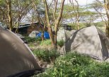 Camping Experience in Corner Baridi, Ngong Hills