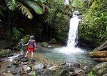 Old San Juan, New San Juan & Rainforest