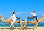 Private Tour 30 Minutes Camel Safari Photo Wedding