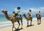 Best Private Trip Camel Safari One Hour In White Sand Beach And Uluwatu temple