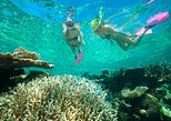 Catamaran Snorkel including Shipwreck and Starfish with Transfer