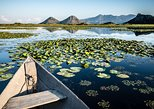 Day trip: Skadar Lake boat cruising tour from Podgorica