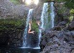Small Group Waipio Valley and Waterfalls Adventure