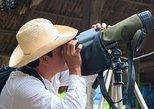 Observación de aves en La Mancha