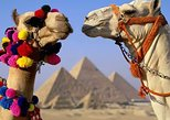 Cairo : Private Day Tour to Giza Pyramids & Sphinx ,Sakkara and Memphis