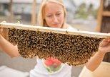 Kona Tour: Coffee Plantation, Kealakekua Bay, Kaloko-Honokohau Park, and Bee Farm