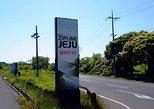 Zipline Jeju transfer,One way,Round trip
