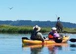 Eagle Viewing Kayak Tour