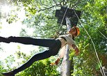 Flight of the Gibbon Pattaya with Thai Lunch and Hotel Transfer